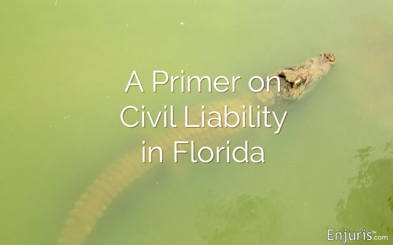 alligator Florida civil liability