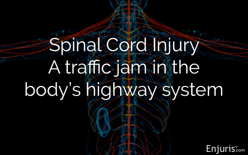 spinal cord, brain, injury, head, spine, accident, head, internal, damage